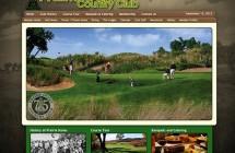 Website Design & Streaming